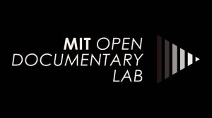 Announcing the 2014-2015 MIT OpenDocLab Fellows